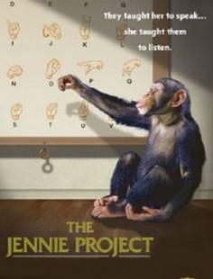 Проект Дженни смотреть онлайн