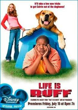 Лучший пес (2005) смотреть онлайн