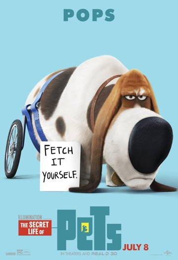 Тайная жизнь домашних животных 2 (2018)