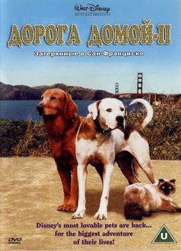 Дорога домой 2: Затерянные в Сан-Франциско (1996) смотреть онлайн