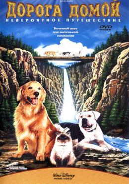 Дорога домой: Невероятное путешествие (1993) смотреть онлайн