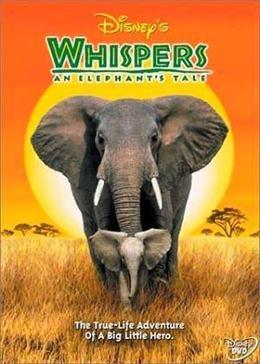 Приключения слона (2000)