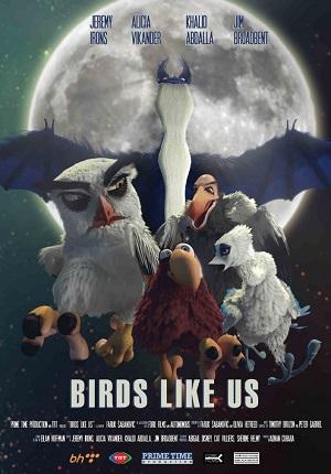 Птицы любят нас (2017) смотреть онлайн